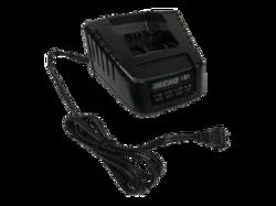 Echo Pro Battery 50v Charger